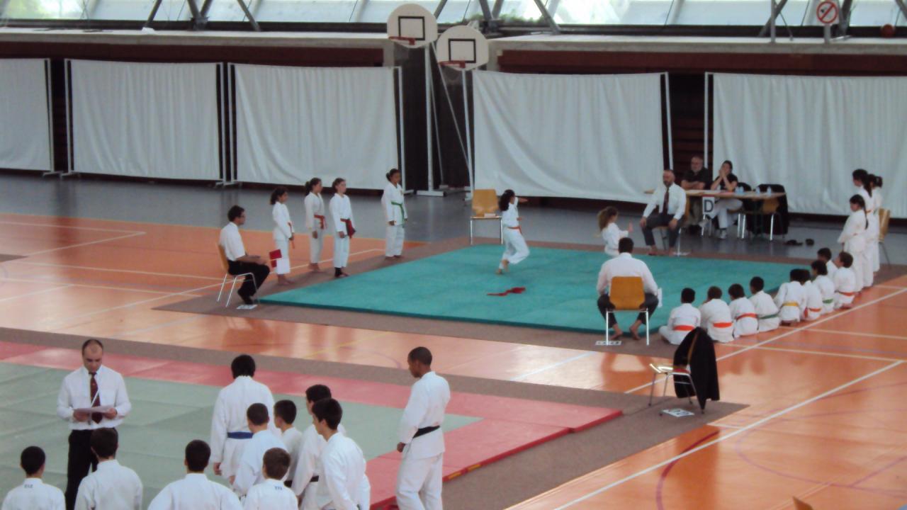 challenge M. Moko 2011,LE Thillay 95