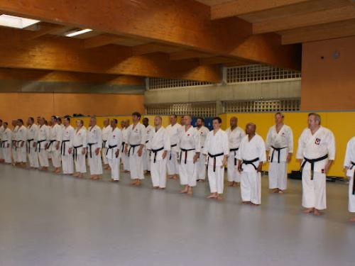 12-05-18-aix-sur-vienne-seminaire-instructeurs-france-jka.jpg